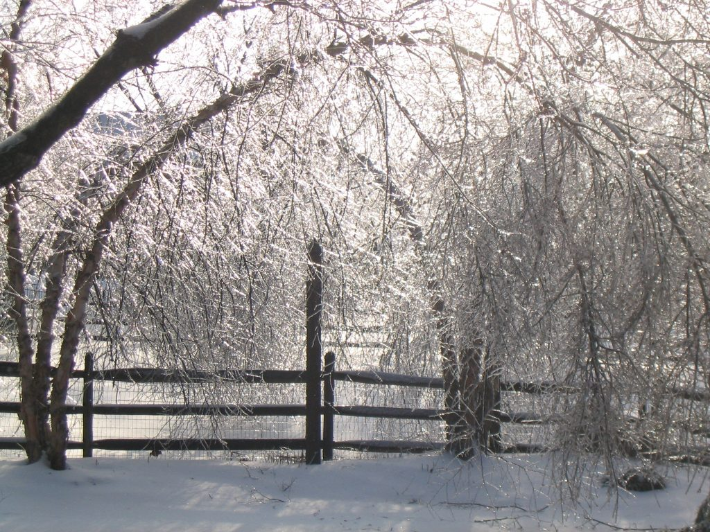 Peace pole in an ice storm with trees bending to the ground